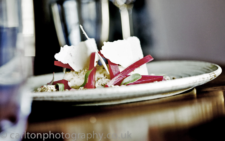 creative food photography for website images